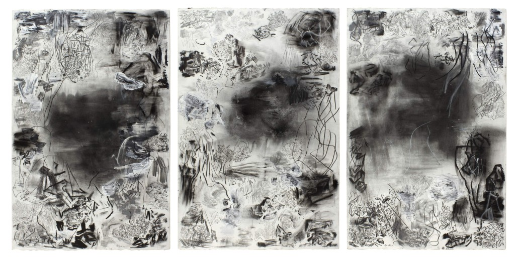 Stupia_Tríptico, Sin título, técnica mixta sobre papel, 3 x 120x80 cm, 2014